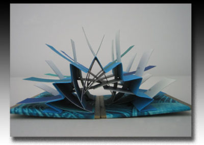 Sculptural Flag Book